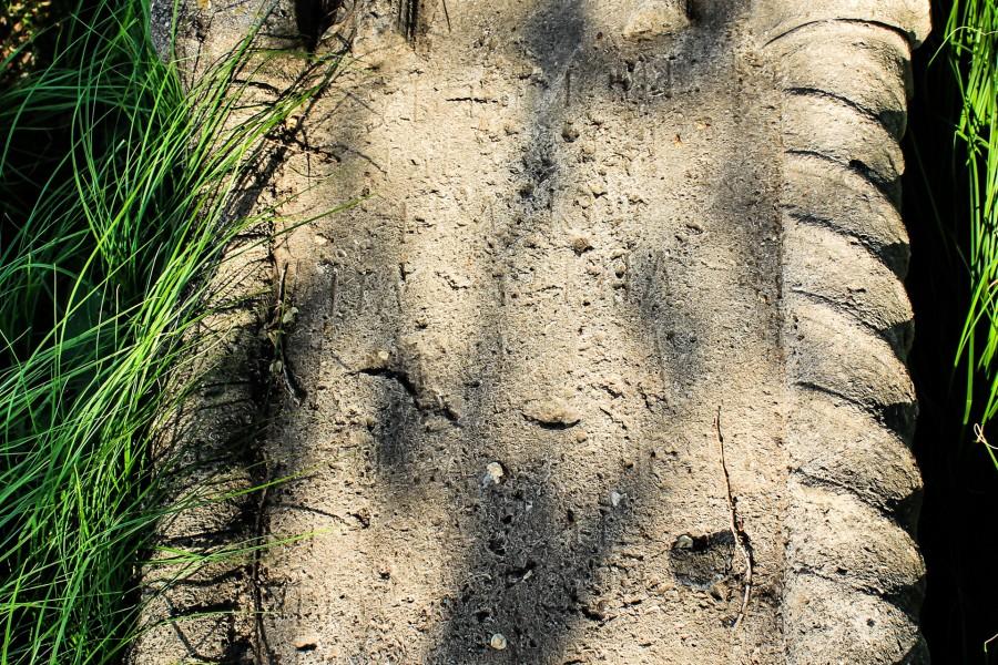 Надгробные камни могут рассказать многое о жителях Бёрдской слободы