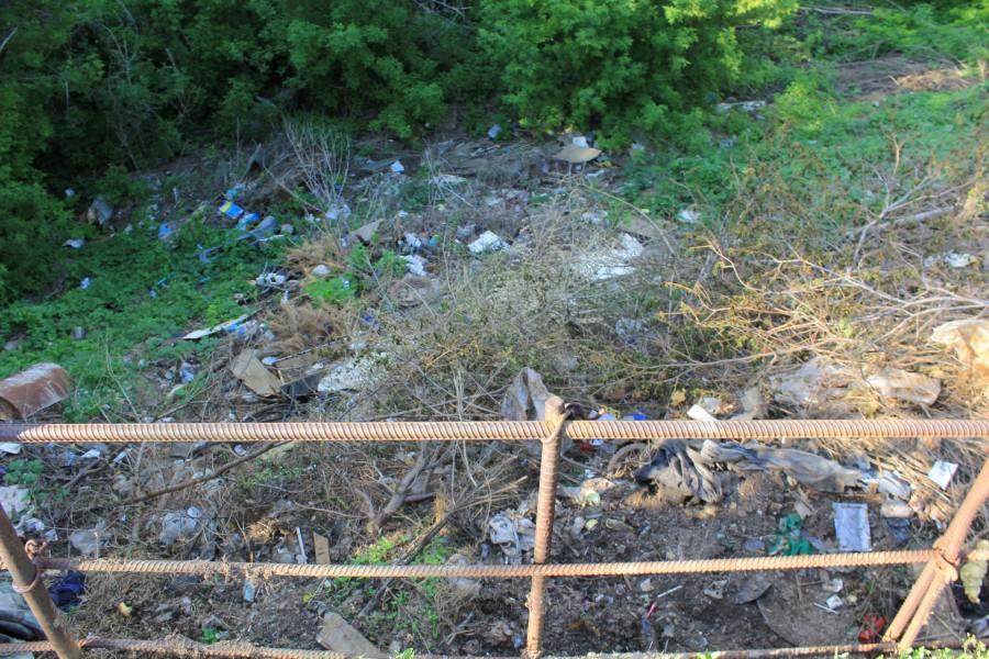 Ну и мусор, а где его нет. В Бердах его предостаточно.