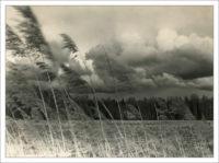 Ураган 1924 года