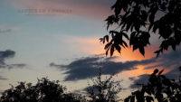 Вечернее небо над Бердской слободой