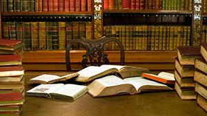 Сетевая библиотека Бердской слободы