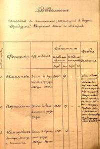 Оренбургская дворянская опека