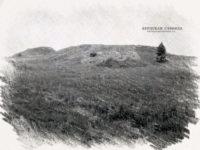Исследование последних курганов на Бердинской горе 5 —11 мая 1905 года