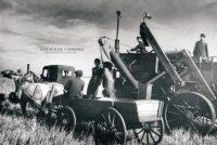Читаем старые газеты: Наш колхоз выполнил годовой план хлебосдачи, 1948