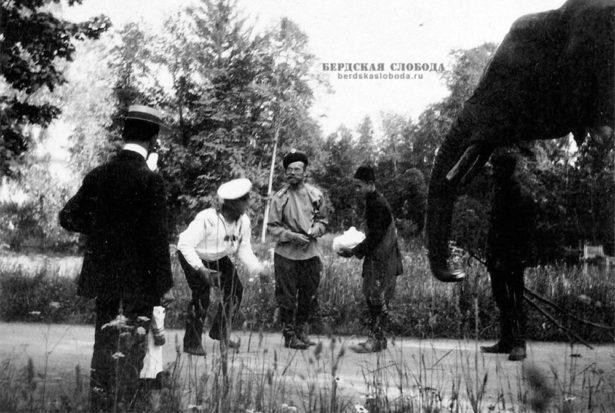 Императорский слон, Царское Село, начало XX века.
