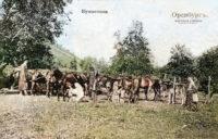 Скотские падежи в Оренбургском уезде, 1870