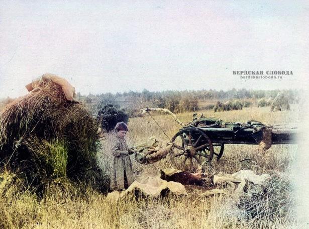 В поле. Фото этнографа Михаила Круковского, сделанное в 1908 году во время экспедиции по Оренбургской и Уфимской губерниям.
