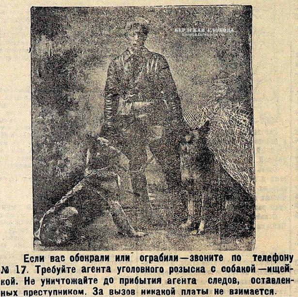 Оренбургский отдел Общества поощрения собак к полицейской и сторожевой службе 1
