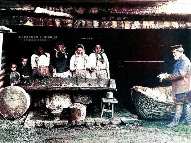 Крестьяне в одном из сел Оренбургской губернии солят капусту. Снимок этнографа Михаила Круковского, сделанный в 1908 году во время экспедиции по Оренбургской и Уфимской губерниям